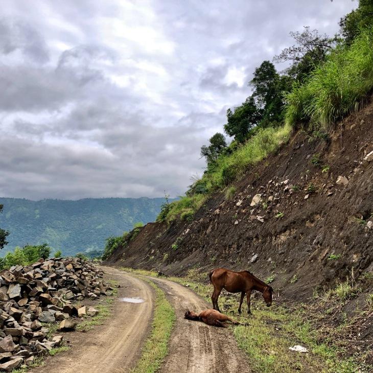 Tonzang road to Chikha